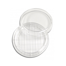 Petri Dishes and Plates